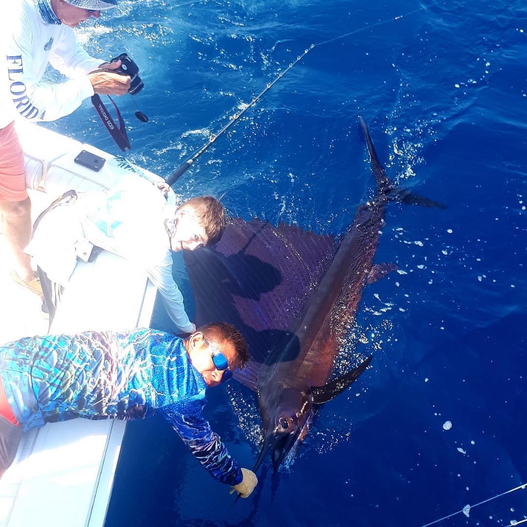 Los Suenos, CR - Go Fish released 4 Sailfish.