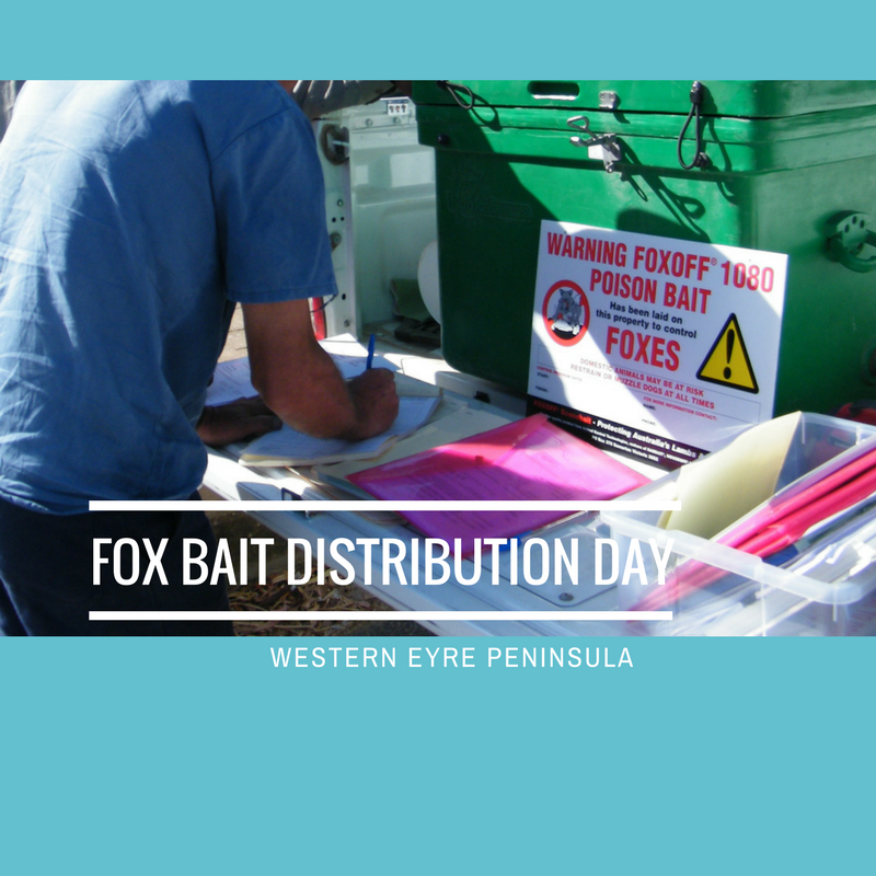 REMINDER FOR WESTERN EP FARMERS // Tomorrow (Wednesday 20 Feb) we have #Fox Bait Distribution Days @ #Goode (Warren Beattie's), 9:00 AM   #Penong (Westies Tennis Courts),11:30 AM   #Charra (Charra Hall), 1:30 PM. See you there! #EyrePeninsula Full list http://bit.ly/2019-allEP-foxbait…
