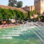 Image for the Tweet beginning: Córdoba acogerá en marzo el