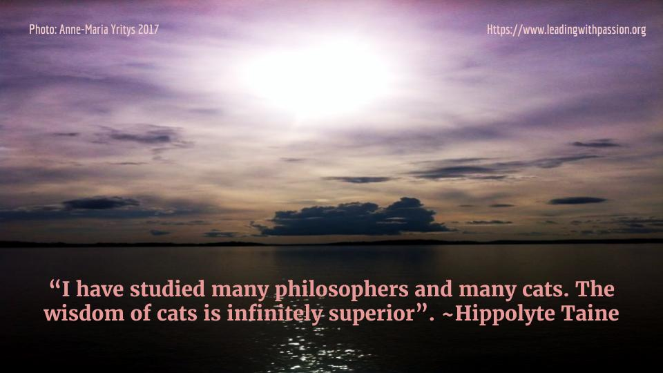 """I have studied many philosophers and many cats. The wisdom of cats is infinitely superior"". ~H.Taine http://bit.ly/PHILOSOPHY888  #leadership #education"