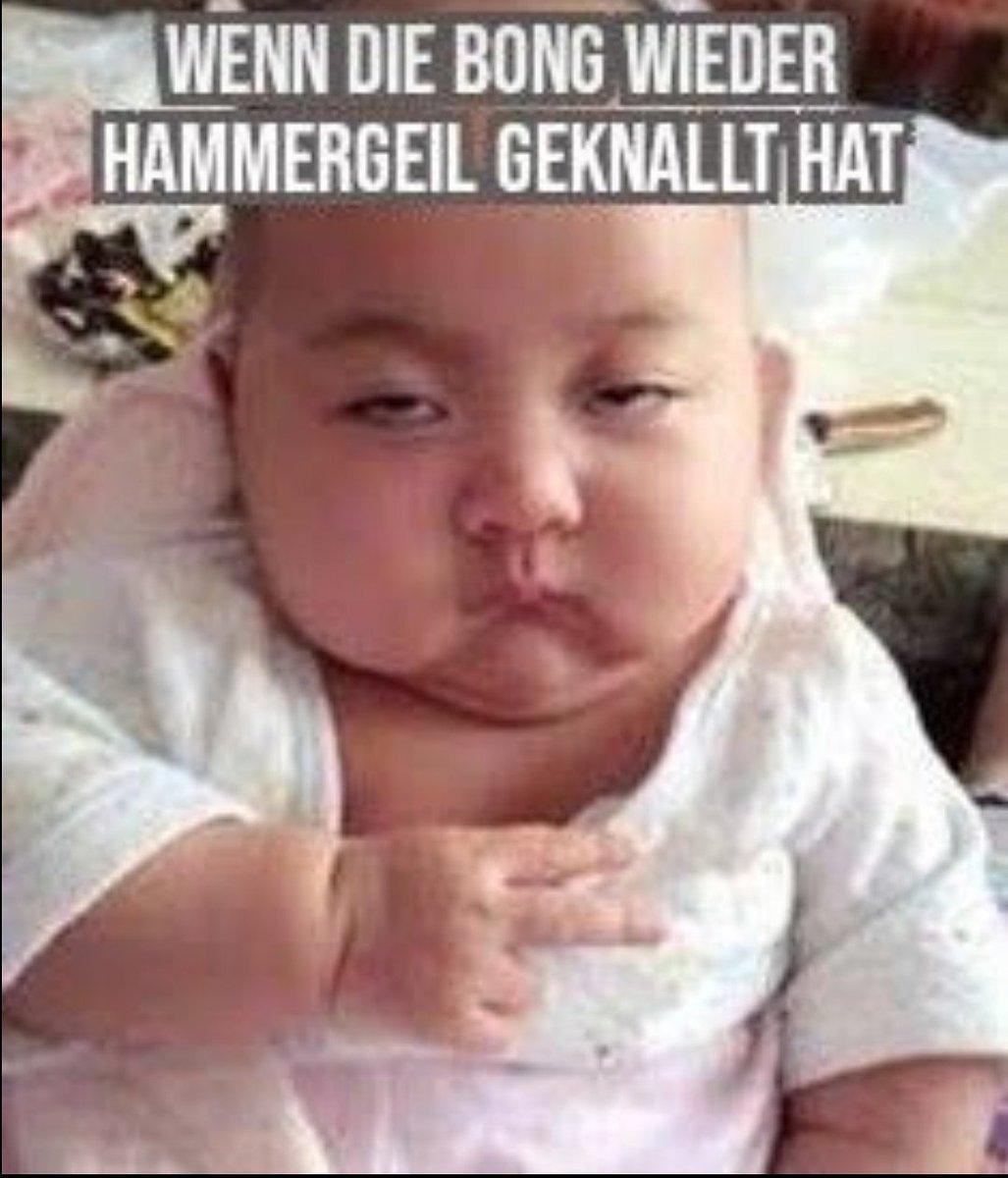 Beste Memes Deutsch