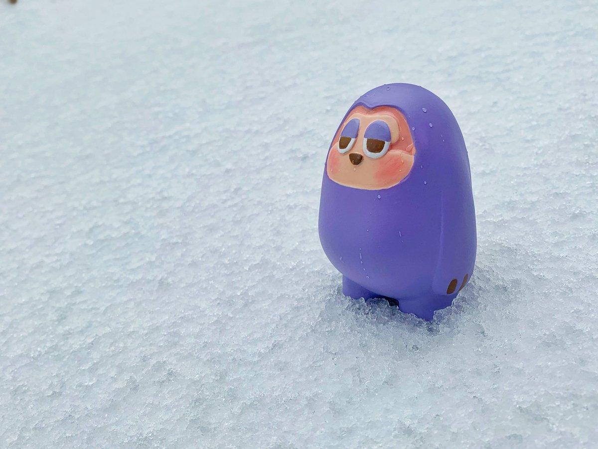 눈오는날 히키 ❄️💜  #슬로 #프로젝트더슬로 #아트토이 #나무늘보 #나무늘보캐릭터 #일러스트  #히키코모리 #sllo #projectthesllo #arttoy #sloth #character #artwork #charactertoy #kidult #designertoy #illust  #illustration  #hikikomori #なまけもの #スロー  #ひきこもり #snowday #winter