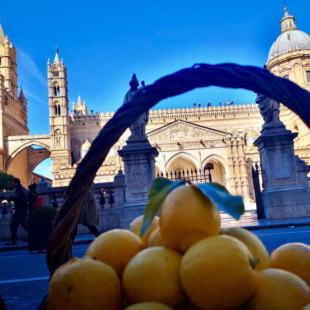 Palermo via @RosannaM777 #travel #palermo #sicily #sicilia #italy #beautyfromitaly https://t.co/7dzRuAkgVp