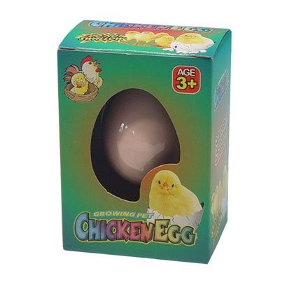 Kids Novelty Hatching Chicken. Visit >>  http://bit.ly/2Pa9OWm   #Chickens #Toys #Christmas