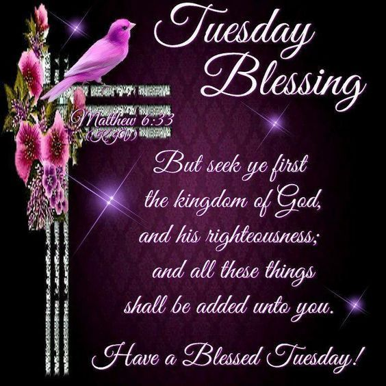#goodmorning #Everyone. But seek first the kingdom of God and His righteousness, and all these things shall be added to you. Matthew 6:33. Amen. May we seek the things of God that are of eternal value. God bless. @VijayaB71921158 @Alphaan16148110 @intrinsictweets @PoeticPastries