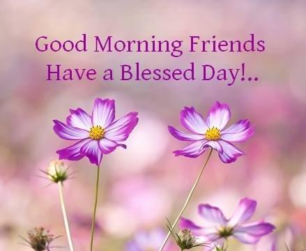 Enjoy your Tuesday everyone 👋😊 #TuesdayMotivation #goodmorning #GoodMorningWorld #Tuesday