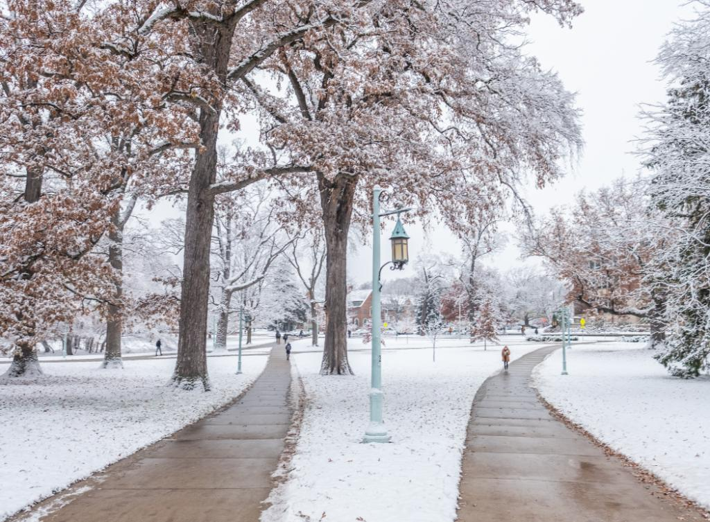 Those magical lamp posts. #MSUView
