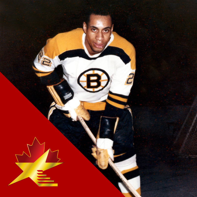 """Willie Eldon O'Ree  1935 - present  Willie O'Ree is the 1st black NHLplayer.  O'Ree is referred to as the """"Jackie Robinsonof ice hockey"""" because breaking the blackcolour barrierin the sport.  He was inducted into theHockey Hall of Famein November 2018.  #acwof #acwalkoffame"""