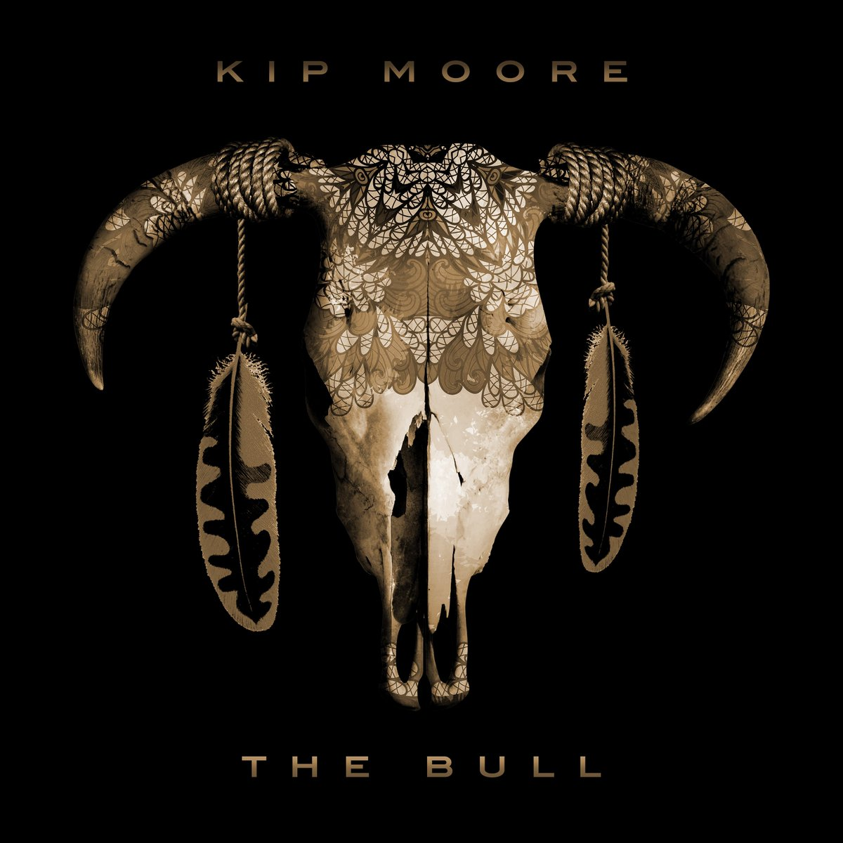 This song embodies who I am and what we've been doing on the road as a band for years. I think it's something a lot of people can relate to, having to get back up and keep going after what you believe in. #TheBull Listen:  https://t.co/d0WGUxfboL
