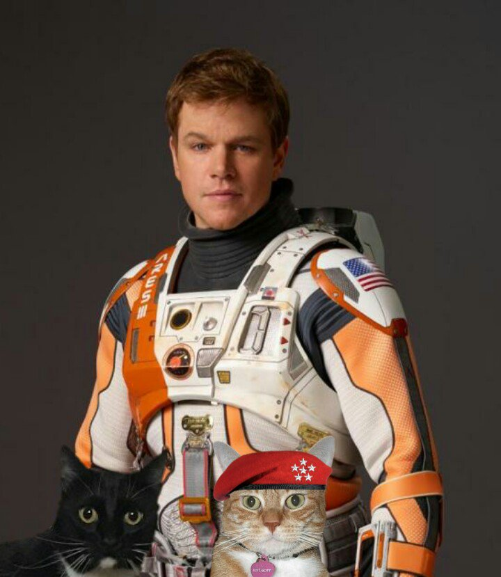 #GK4POTUS #COOPER4VP Astronaut Mark Watney has endorsed General Kat / Cooper 2020 @planetpakua @BlaineRincon @littlekatmom @RoodJood @LilithTheCat999 @frecklesgraham @Cecinatrix @St1tch134