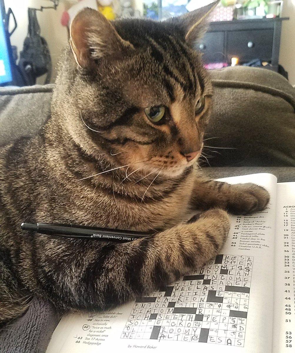Crossword Hobbyist (@XWordHobbyist) | Twitter