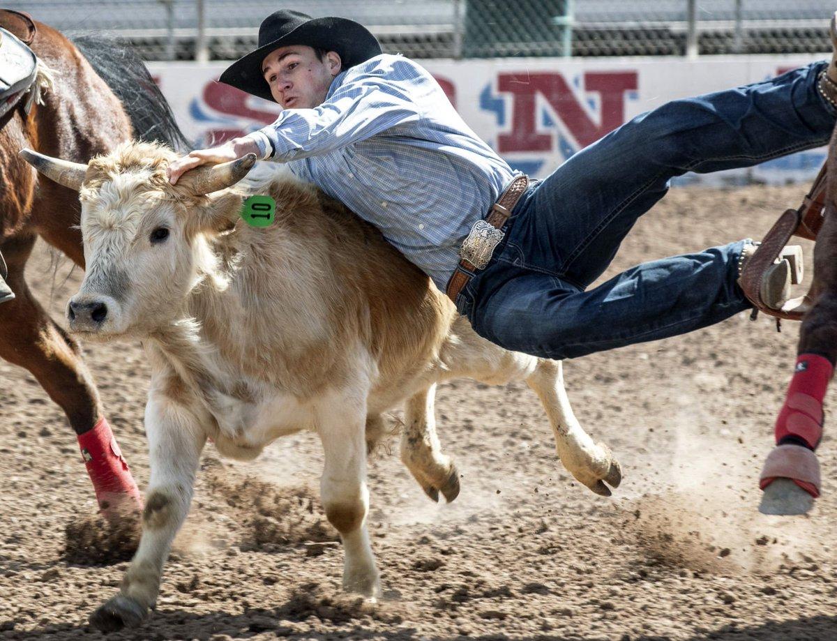 Photos from 2019 Tucson Rodeo Week https://t.co/v4ewyHNbjk