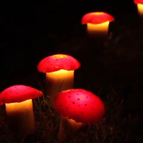 These mushroom lawn lights are the cutest addition to any garden—and bonus, they're solar-powered! By Nifty Outdoors