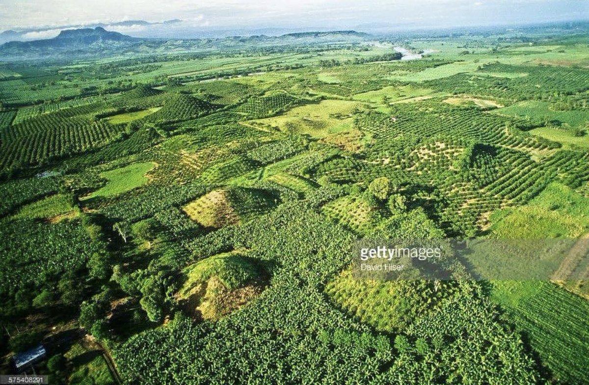 La zona arqueológica de El Pital en #Veracruz es una de las menos conocidas de nuestro #México. Sus montículos estan cubiertos por maleza en gran medida. ¿Cuántas pirámides alcanzas a contar?