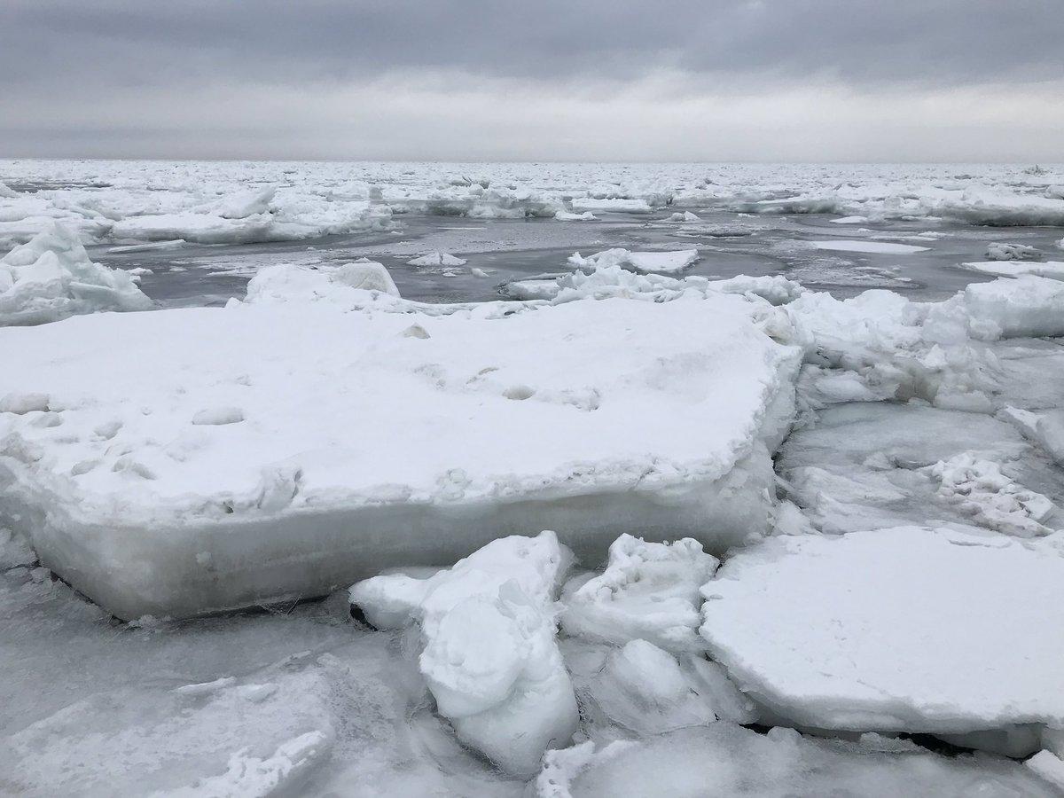 ナビ 流氷