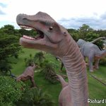 Image for the Tweet beginning: #VirtualThailand: Kalasin Dinosaur Park is