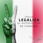 Image for the Tweet beginning: En #Italia se #legaliza el