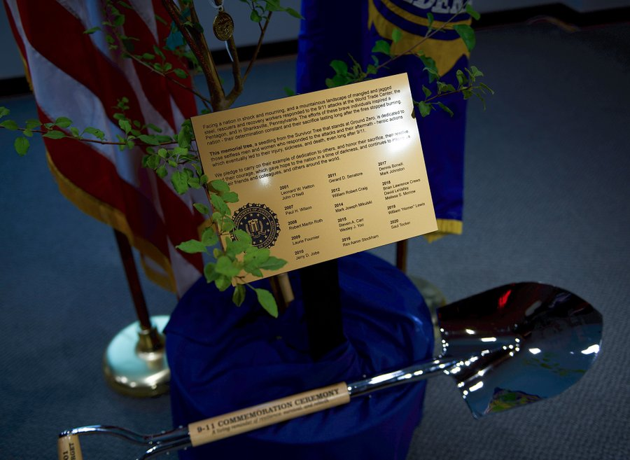 A gold plaque that lists the names of FBI personnel who died as a result of 9/11 stands in the center of a seedling from the Survivor Tree.
