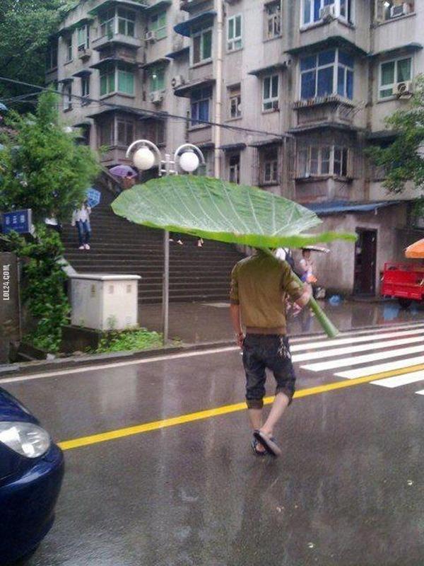 童話の世界から出てきた?大きな葉っぱを傘代わりにする奴!