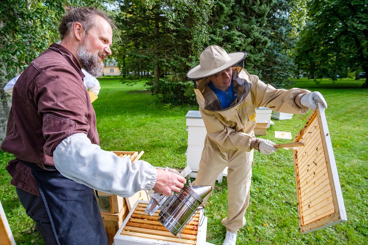#Estonia, a country where the president champions beekeeping 🐝.