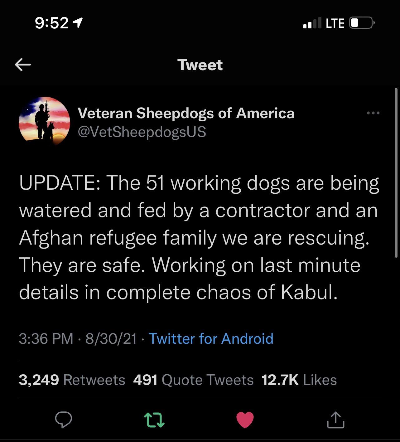 הצבא האמרקאי נטש 51 כלבים בכלובים למות מרעב וצמא בתוך כלובים סגורים בבסיסים באפגניסטאן E-FauEcXIAQB_90?format=jpg&name=large