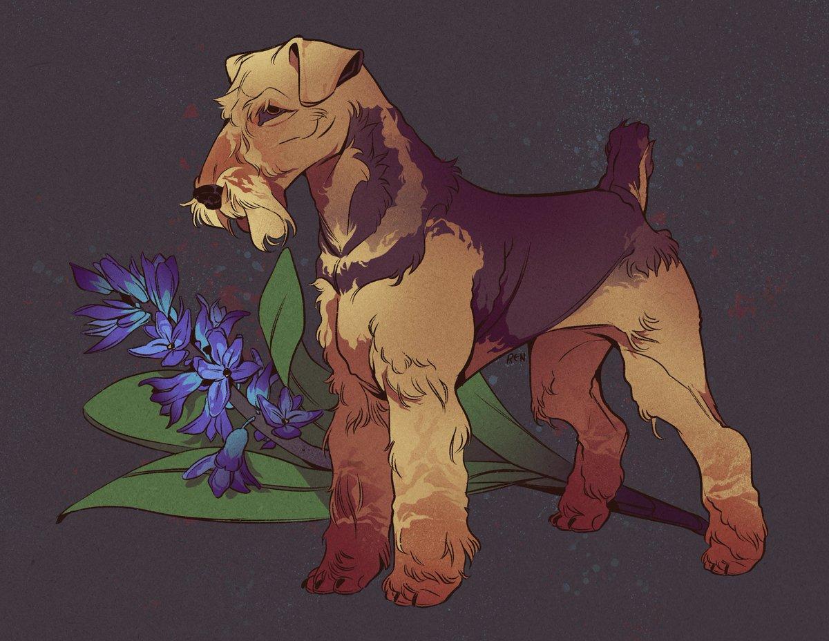 Noble terrier. Commission piece for Jaime