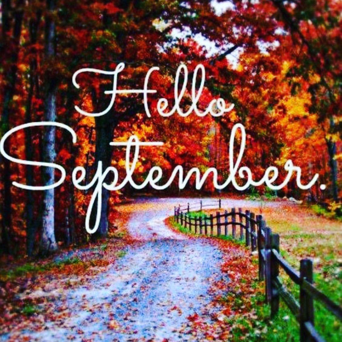 Hello September!  As autumn arrives, business events are up and running 🎉 So excited for all the events we have taking place over the next few months!  Contact us now to find a venue for your event: 📧events@venuesearch.co.uk