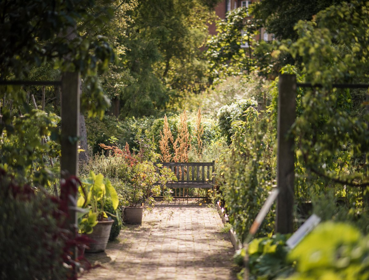 As we enter the autumnal months of September and October, it is the perfect time to 'Keep Learning' - our theme for the next couple of months. We'll be running a range of courses, workshops and tours: ow.ly/GaqO50G1mcN #botanicgarden #gardens #plants #horticulture #trees