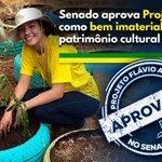 Image for the Tweet beginning: A Comissão de Educação, Cultura
