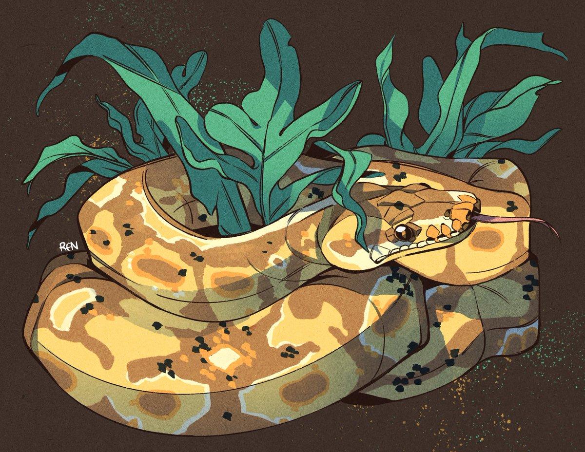 A sleepy banana morph python commission for Manon