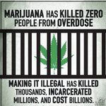 Image for the Tweet beginning: Enough said! #Cannabis #LegalizeIt