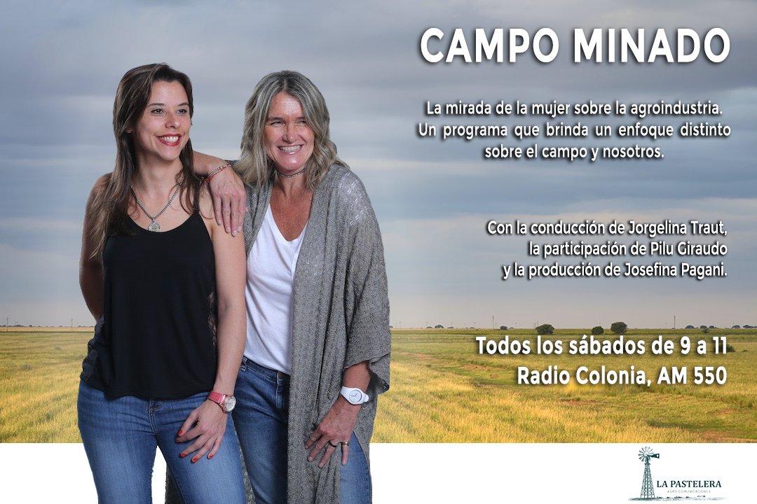 Campominado Campominado550 Twitter