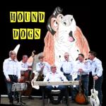 Image for the Tweet beginning: Aquest diumenge, Hound Dogs en