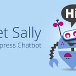 Image for the Tweet beginning: Introducing Sally, our new Chatbot