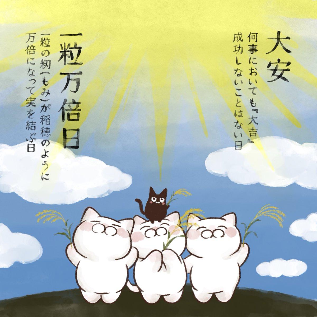 本日9月28日は【大安】と【一粒万倍日】の2つが重なる縁起の良い日。