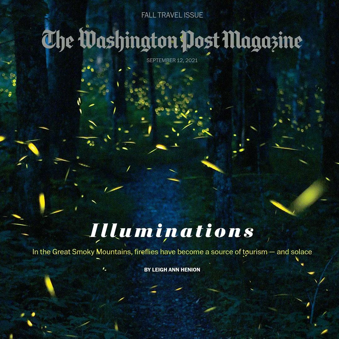 A luminous read.