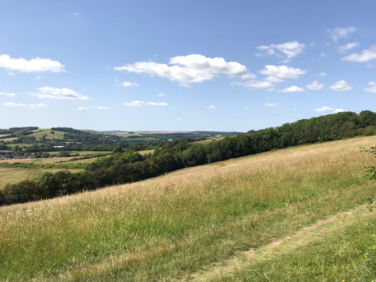 We offer Walk & Strolls for every level of walker, whether you're new to walking or a seasoned hiker. More information can be found here: friendsofthesouthdowns.org.uk/public-walks/ #southdowns #southdownsway #walkinguk