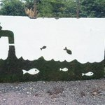 Image for the Tweet beginning: Created using moss, the message