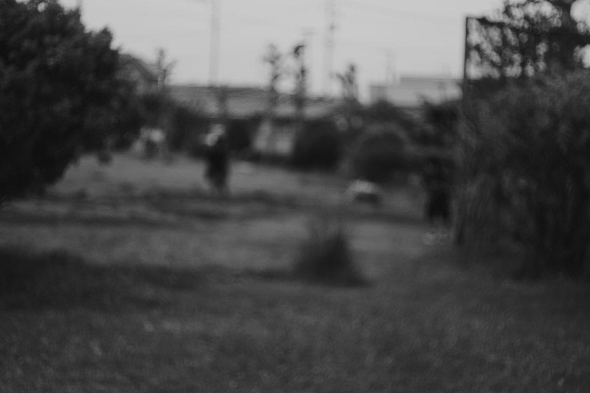 少年たちが野球を始めた #ふぉと #snap #photography  #写真好きな人と繋がりたい https://t.co/9fsnEHog6b