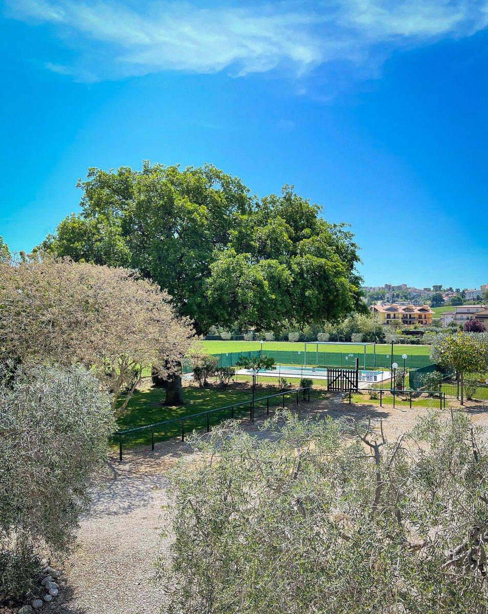 """""""La felicità fa brillare gli occhi, la serenità l'anima."""" Un buon fine settimana dal terrazzo delle Meridiana! 🤩 #agriturismo #agriturismi #abruzzo #mare #montagna #albaadriatica #giulianova #tortoreto #sant'omero #santomero #countryhouse #italia #italy #holidays #holiday https://t.co/aMZrNSsrv6"""