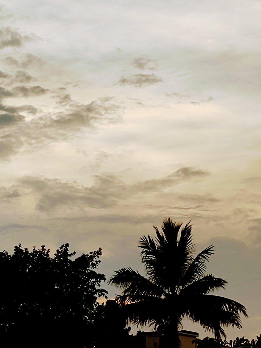 ये श्याम मस्तानी मधोश किए जाए, कोई डोर मुझे खींचे तेरी ओर लिए जाए!♥️🎶🎼  #sunsetphotography #nature #myclicks https://t.co/zIATDVT0KE