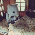 nekomesi_nami_のサムネイル画像