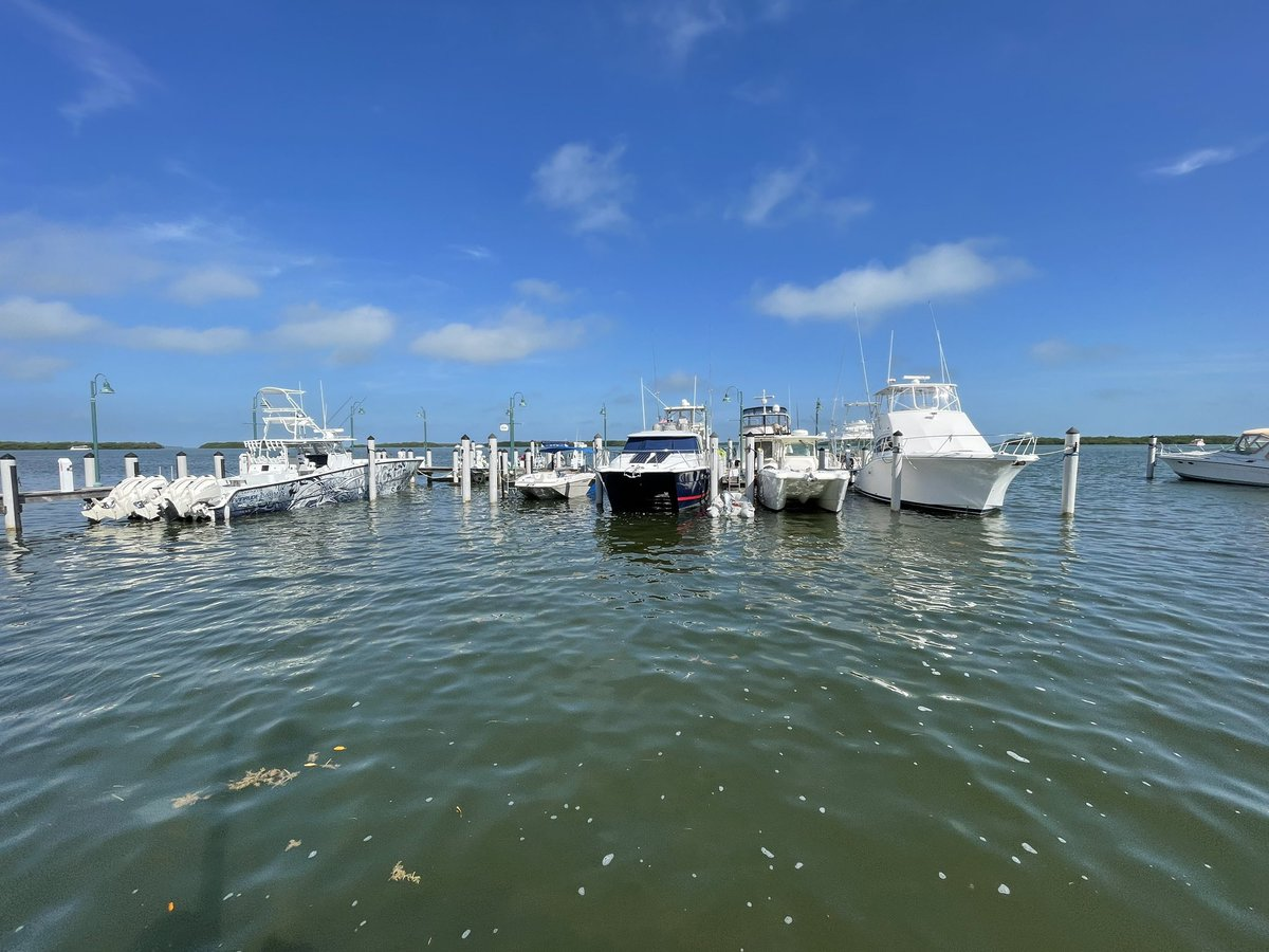 It's Saturday morning in the Florida Keys. Let's go fishing. Gary McAdams, Key West Realtor, 305-731-0501.  #keywest #keywestrealestate #keywestrealtor #garymcadams #garymcadamsrealtor #homes #MLS #homesforsale #garymcadamskeywest #realestate #realtor #keywestflorida #floridakeys https://t.co/kkzaBASLMN
