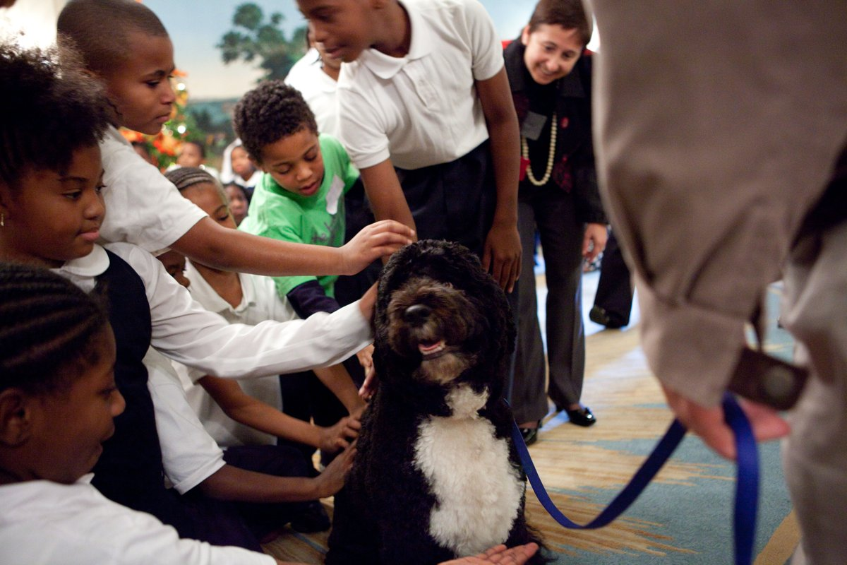 He tolerated all the fuss that came with being in the White House, had a big bark but no bite, loved to jump in the pool in the summer, was unflappable with children, lived for scraps around the dinner table, and had great hair.