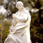 Image for the Tweet beginning: Nuestros obispos nos ayudan a