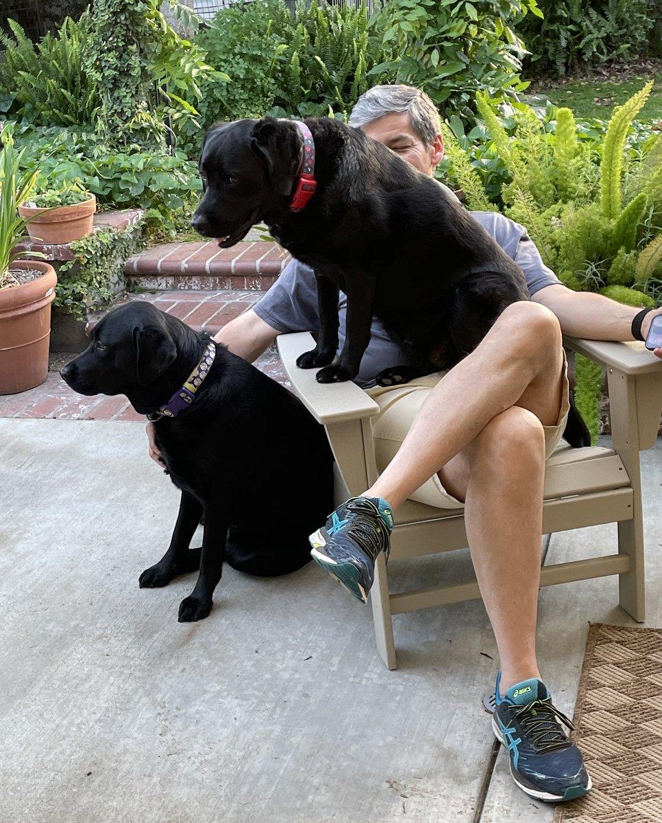 RT @Rschooley: Double dog dare. https://t.co/7j16r6a0qZ