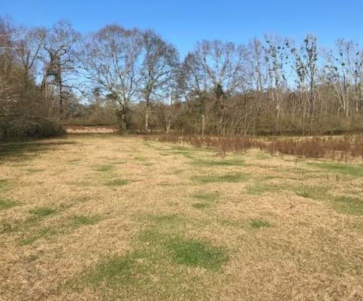 Check out this rare gem that combines both open improved #pasture land and excellent mature #timber 157 Acres Land for Sale Kentwood, Tangipahoa Parish, LA - Kentwood, #Louisiana - More Info: https://t.co/n3yPuWa1vw  #landforsale  @UCRealEstate https://t.co/HjLTj05eZL