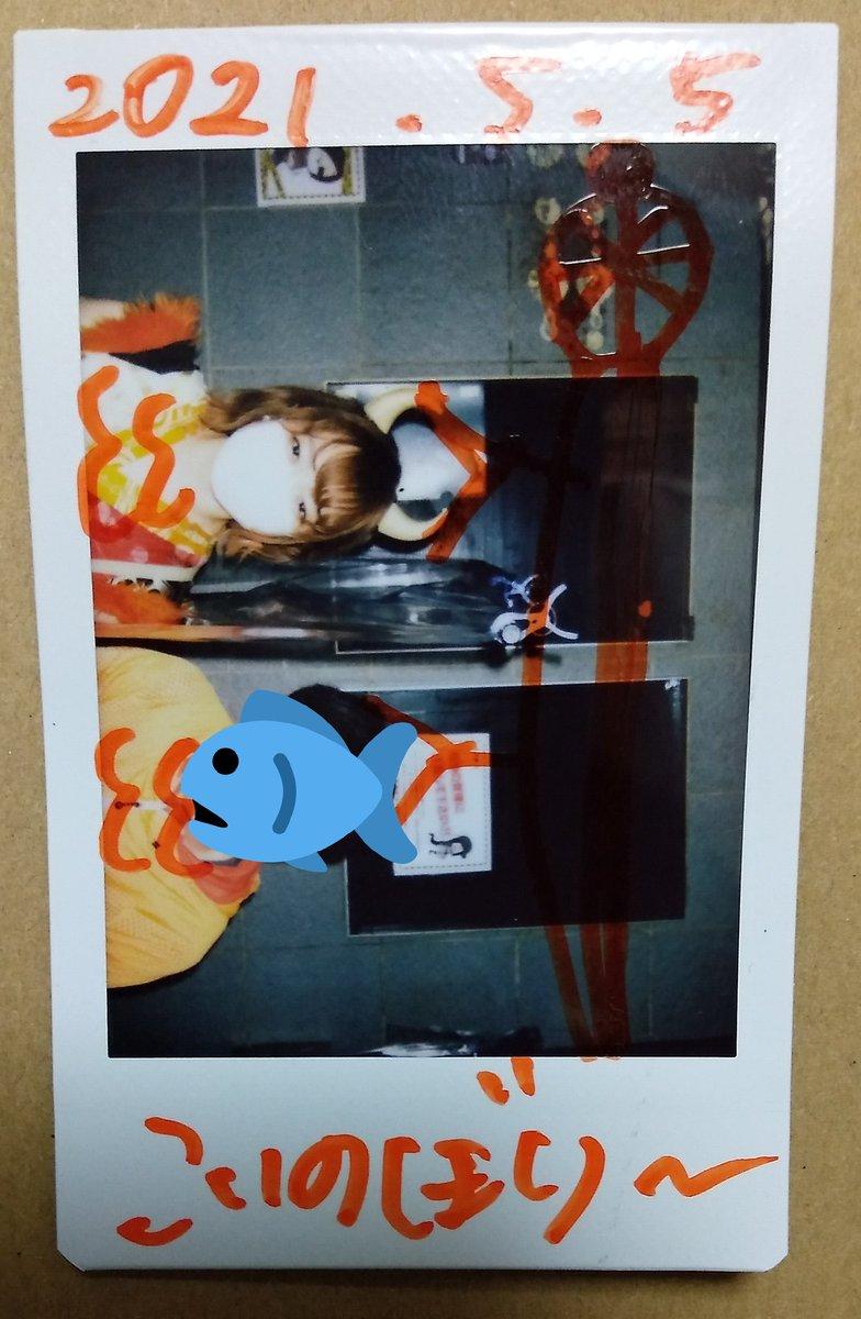 今年のこどもの日は、鯉のぼりをあげました。  こういう発想、まどろん天才  #かな坊部 #鯉のぼり...