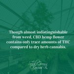 Image for the Tweet beginning: What is CBD (Hemp) Flower