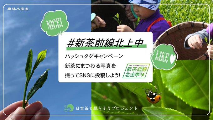 MAFF_JAPANの画像